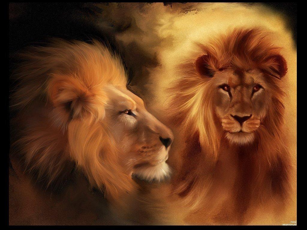 Král-zvířat